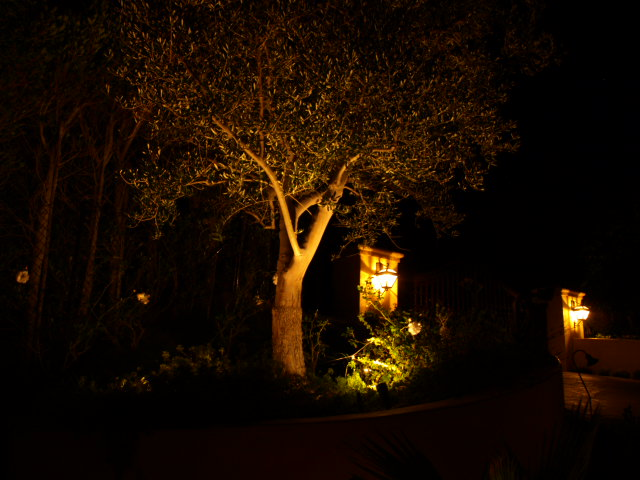 Conejo Valley Exterior Lighting